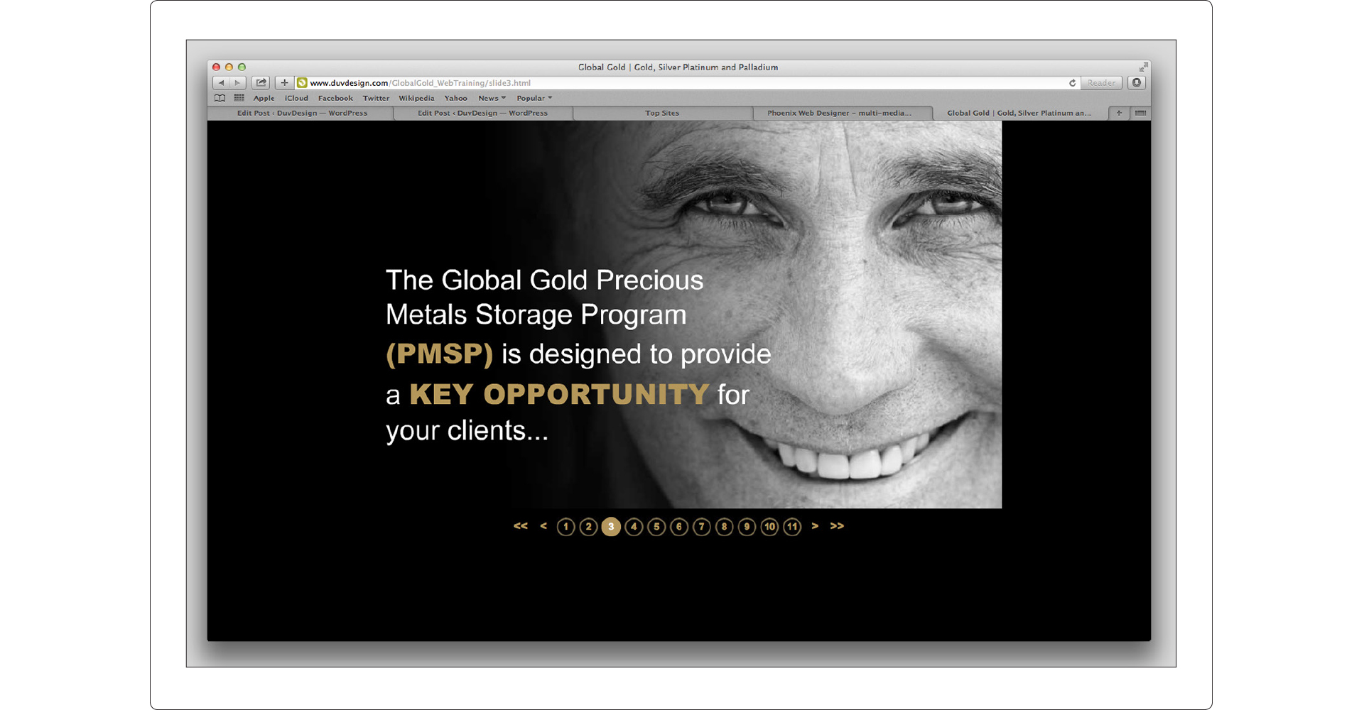 Global Gold Training Presentation
