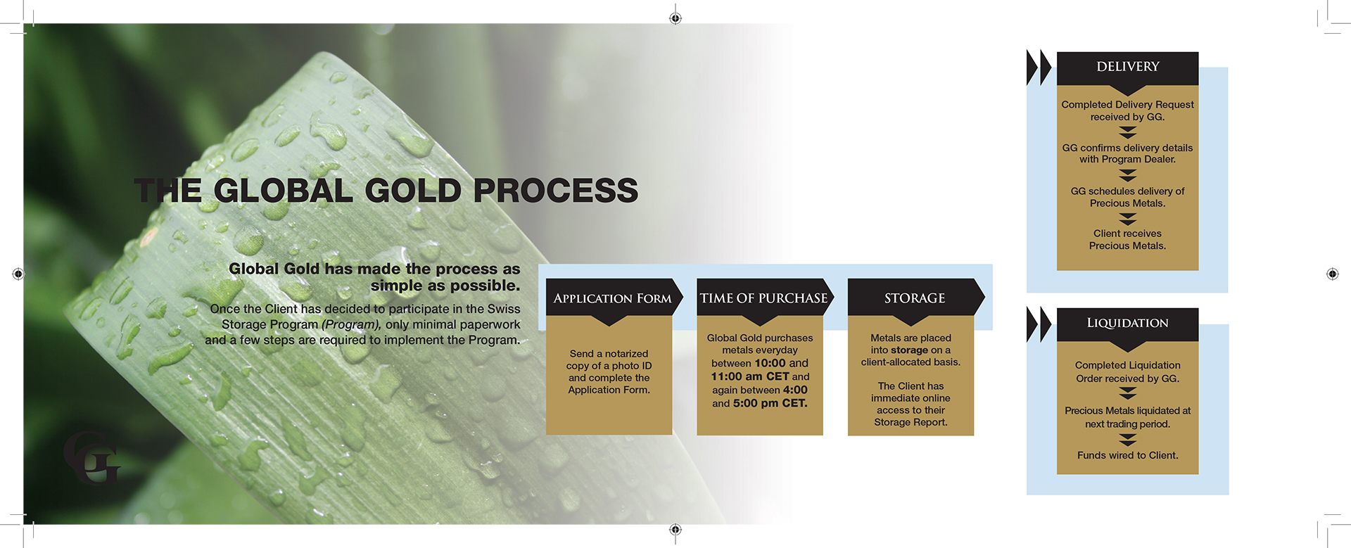 Global Gold Brochure Design